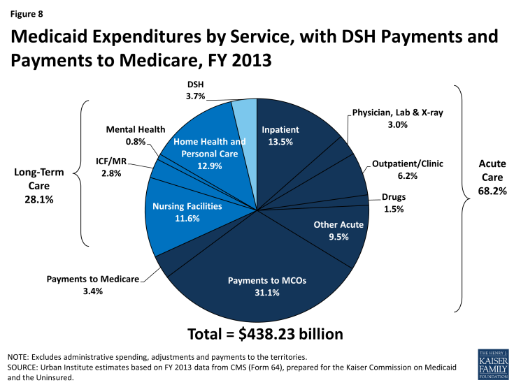 Figure 8: Medicaid Expenditures by Service, with DSH Payments and Payments to Medicare, FY 2013