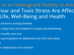 Living in An Immigrant Family: How Fear and Toxic Stress Are Affecting Daily Life