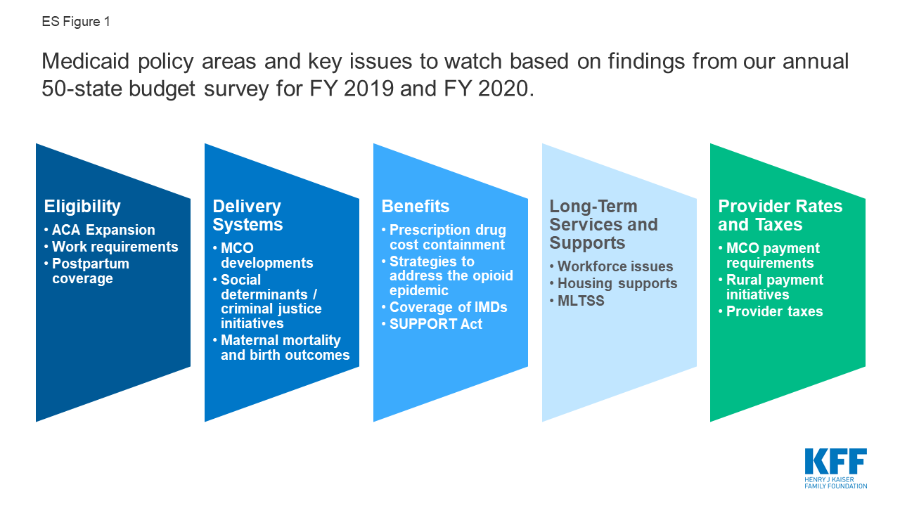 A View from the States: Key Medicaid Policy Changes: Results from a  50-State Medicaid Budget Survey for State Fiscal Years 2019 and 2020   KFF