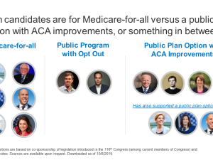 Where Do The Democratic Candidates for Election 2020 Stand on Health Reform?