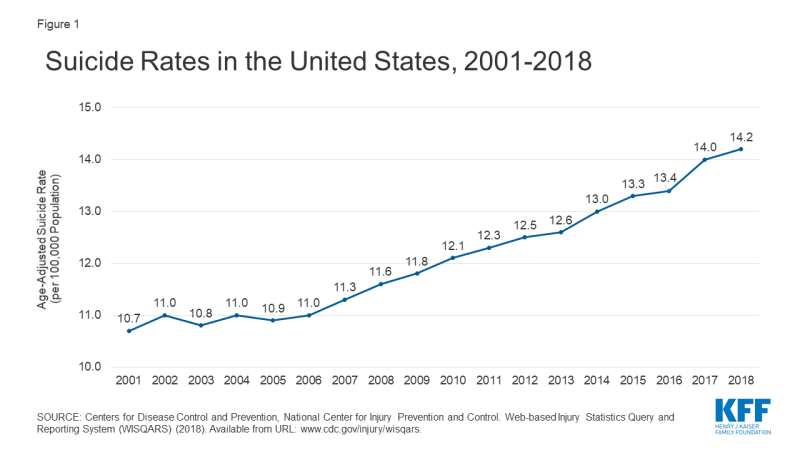 Line Chart Showing Suicide Rate in the US