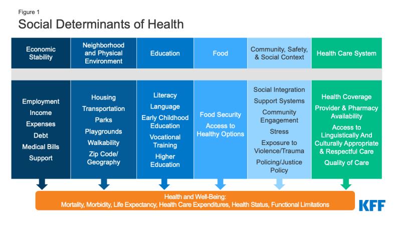 Figure 1: Social Determinants of Health