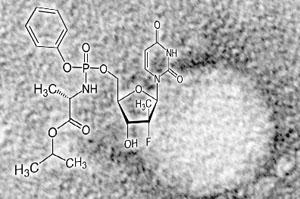 VA, California Panels Urge Costly Hepatitis C Drugs For Sickest Patients