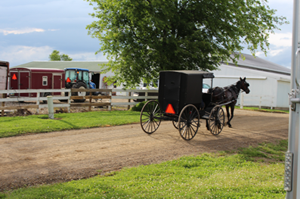 Ohio Amish Reconsider Vaccines Amid Measles Outbreak